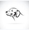 Dog head labrador retriever on white background vector image