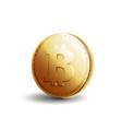 gold coin bitcoin vector image