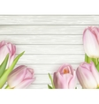 Spring tulips on wooden for design EPS 10 vector image vector image