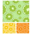 citrus seamless background vector image