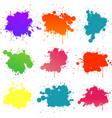 colorful paint splat vector image