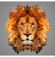Lion low poly portrait vector image