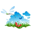 summer meadow with a dragonfly vector image