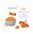 Hand drawn cupcake caramel candy flavor vector image