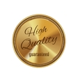Golden badge high quality vector image