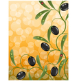 floral background with olive branch vector image vector image