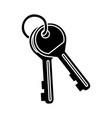 door keys isolated vector image