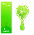 Lime crush juice vector image
