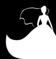 bride card vector image