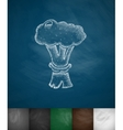 nuclear explosion icon vector image