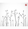 black tree branches with fresh leaves on white vector image