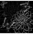 black and white background dahlia and butterflies vector image vector image