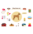 Dog items set care object and stuff Elements vector image