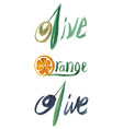inscription olives and orange vector image