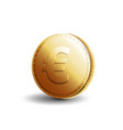 gold coin euro vector image