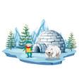 arctic scene with boy and polar bear by igloo vector image