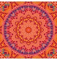 Abstract ethnic seamless pattern ornamental vector image