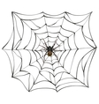 Spiderweb Big spider web Scary spider of web vector image