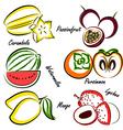 thai fruit4 vector image