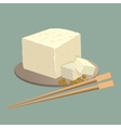 Tofu cheese on plate with chopsticks isolated vector image