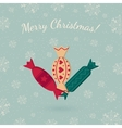 Candies on winter backdrop vector image