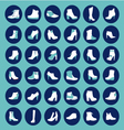 Shoes silhouettes - vector image