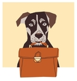 Friendly dog with business case vector image
