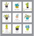 Cute hand drawn cactus set vector image vector image