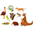 australian animals vector image