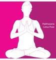 lotus position - padmasana vector image