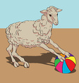 sheep playing the ball vector image
