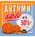 autumn sale banner background template design vector image