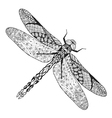 Zentangle stylized dragonfly Sketch for tattoo or vector image