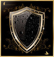 Shield with black water drops vector image