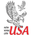 eagle tee graphic vector image