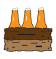 group of beer bottles vector image