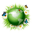 ecology conceptgreen globe and grass with vector image