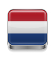 Metal icon of Netherlands vector image