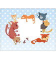 Cats around the frame vector image
