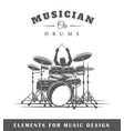 Drummer plays the drums vector image