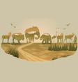 double exposure wild animals vector image