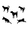 set of dog silhouette white background vector image
