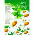 happy spring greeting card with daisy flowers vector image