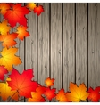 Autumn Leaves over wooden background vector image
