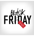 black friday new sign vector image vector image
