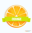 fresh orange slice with stripe vector image