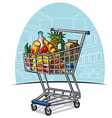 shopping trolley with products vector image