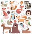 Woodland Animals Volume 2 vector image