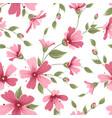 gypsophila babys breath flower pattern pink red vector image