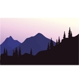 Mountain and spruce of silhouette vector image